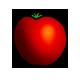 Bio-Tomate-3
